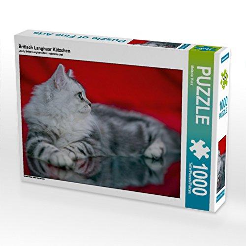 Britisch Langhaar Kätzchen 1000 Teile Puzzle quer: Süßer kleiner ...