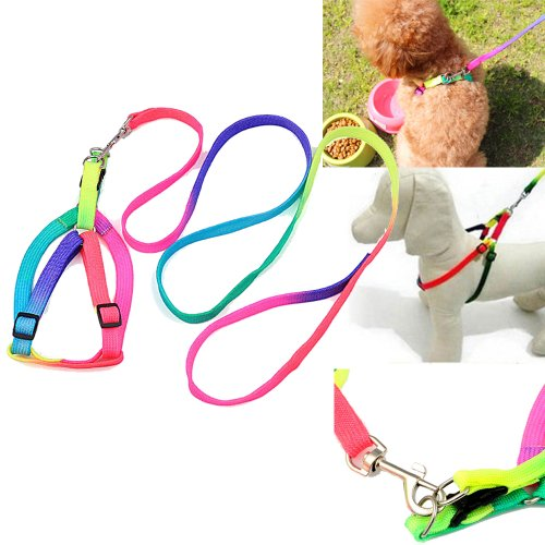 Top Plaza 115Cm Cute Rainbow Pet Dog Puppy Nylon Rope Walking Adjustable Lead Leash Collar