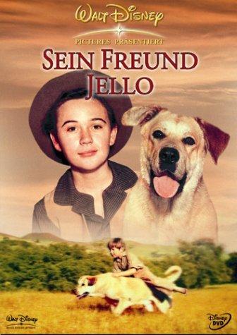 zanna-gialla-sein-freund-jello-dvd-italian-import-by-dorothy-mcguire