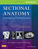img - for Workbook for Sectional Anatomy for Imaging Professionals, 3e book / textbook / text book