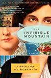 The Invisible Mountain (Vintage Contemporaries)