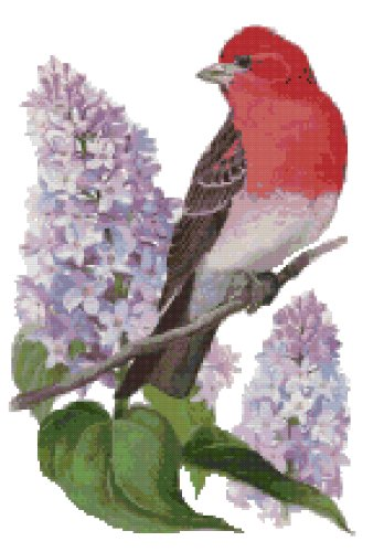 New Hampshire State Symbol Counted Cross Stitch Pattern