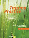 img - for Trauma Practice : Tools for Stabilization and Recovery book / textbook / text book
