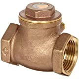 Dixon Brass Horizontal Swing Check Valve, NPT Female