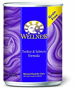 Wellness Canned Cat Food, Turkey and Salmon Recipe, 12-Pack of 12-1/2-Ounce Cans
