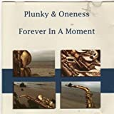echange, troc Plunky & Oneness - Forever in a Moment