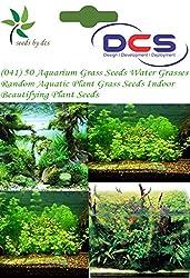 DCS (041) 50 Aquarium Grass Seeds Water Grasses Random Aquatic Plant Grass Seeds Indoor Beautifying Plant Seeds