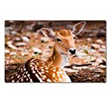 Liili Premium Large Table Mat 28.4 x 17.7 x 0.2 inches An isolated Axis deer in sunset Fossil Rim Wildlife Center Photo 20698405
