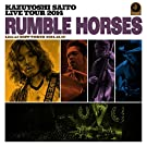 KAZUYOSHI SAITO LIVE TOUR 2014 �gRUMBLE HORSES