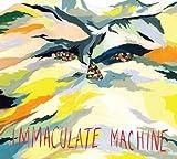 Immaculate Machine High on Jackson Hill