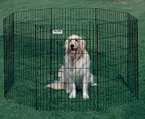 Ultimate Exercise Pen - 42 Inches High
