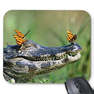 Butterflies resting on caiman Mouse Pads