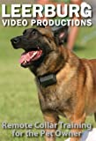 Remote Collar Training for Pet Owners DVD [DVD] [2006]