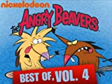 The Angry Beavers: Spooky Spoots / Up All Day