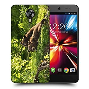 Snoogg Babies Bear Printed Protective Phone Back Case Cover For Micromax Canvas Nitro 4G