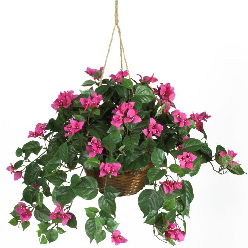 Cheapest Silk Flower Hanging Baskets : Cheap bougainvillea hanging basket silk plant