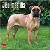 BrownTrout Bullmastiffs 2014 Wall