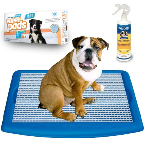 Free Potty Training Kits front-1047226