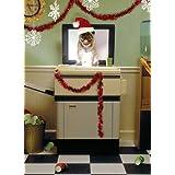 Avanti Christmas Cards, Holiday Party Pug , 10 Pack ~ Avanti Press