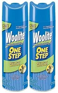 Amazon Com Woolite One Step Foam Carpet Cleaner 22 Oz