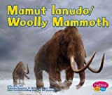img - for Mamut Lanudo / Woolly Mammoth book / textbook / text book