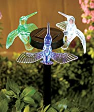 3-Sided Solar Stakes Hummingbirds
