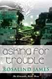 Asking for Trouble (The Kincaids)