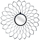 Ruhi Collections Metal Decorative Wall Mirror For Home Décor - B01FSDH7GS