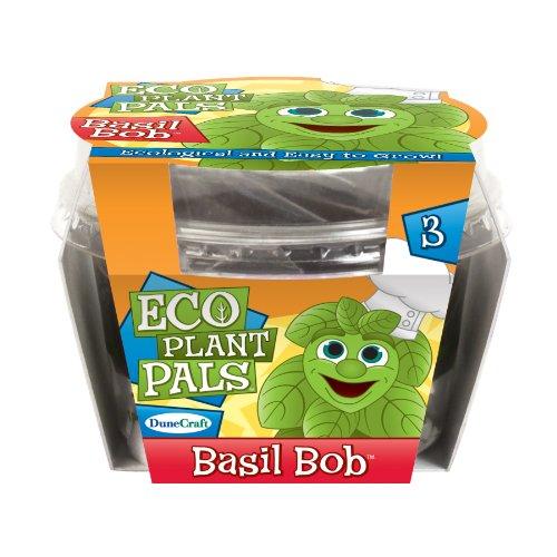 Dunecraft Basil Bob Eco Plant Pal Science Kit