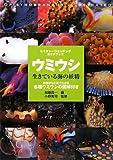 ウミウシ—生きている海の妖精 (ネイチャーウォッチングガイドブック)