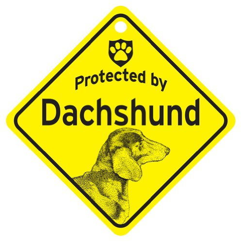 KC Creations Short Hair Dachshund Protected By Dog Sign And Caution Gift Picture