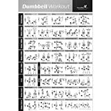 "Dumbbell Workout Exercise Poster - Strength Training Chart - Build Muscle, Tone & Tighten - Home Gym Weight Lifting Routine - Your Guide to Body Building with Free Weights & Resistance - 20""x30"""
