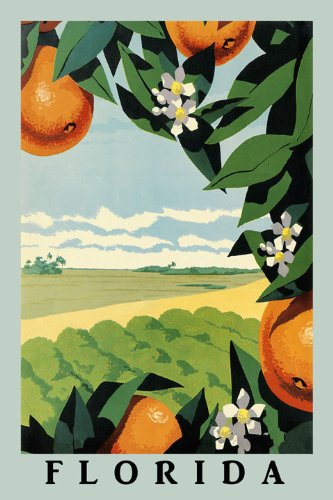 orange-juice-tree-flower-farm-landscape-in-florida-travel-tourism-12-x-16-image-size-vintage-poster-