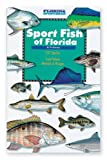 Search : Sport Fish of Florida