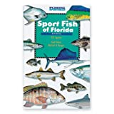 Sport Fish of Florida ~ Vic Dunaway