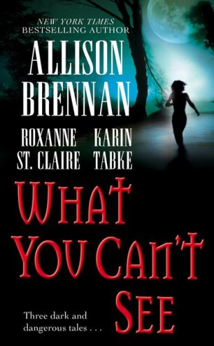 What You Can't See, Allison Brennan, Karin Tabke, Roxanne St. Claire