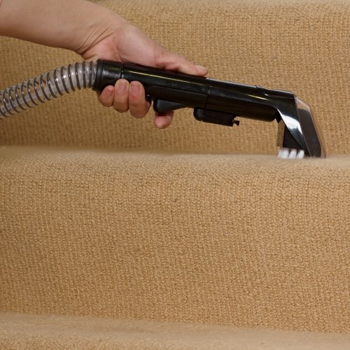how to deep clean carpet at home