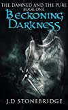 Beckoning Darkness (The Damned and The Pure Book 1)