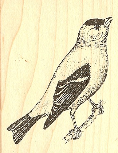 Goldfinch Bird Wood Mounted Rubber Stamp JUDIKINS, NEW - 3571F by_2gembutterfly