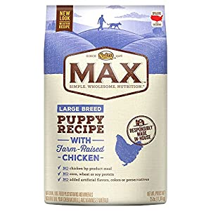 NUTRO MAX Large Breed Puppy Recipe With Farm Raised Chicken Dry Dog Food 25 Pounds