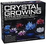 Great Gizmos - Juguete educativo de química (GG403915) (importado)