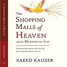 The Shopping Malls of Heaven and the Meaning of Life Audiobook by Saeed Kauser Narrated by Tom Taverna