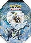 Pokemon Black White Card Game Spring 2012 EX Collectors