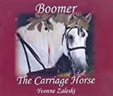 Boomer The Carriage Horse