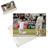 Photo Jigsaw Puzzle of Cricket - The Ashes 2009 - npower Second Test - Day Five - England v Australia from PA Photos