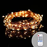 NEWSTYLE 33Ft Copper LED Strings 100 LEDs Starry LED Lights LED String Light Festival Decorative LED String Lights with 12V Power Adapter with Remote Control (Warm White)