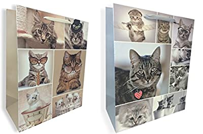Cute Cats Gift Bag Set