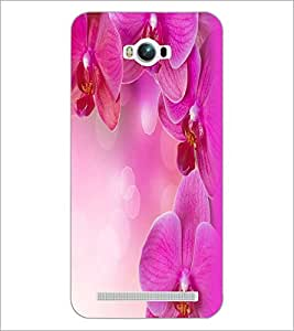 PrintDhaba Flowers D-2392 Back Case Cover for ASUS ZENFONE MAX ZC550KL (Multi-Coloured)