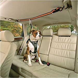 Kurgo Automobile Zip-Line, X-Large (Dogs Over 80 Pounds)
