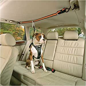 Kurgo Automobile Zip-Line, Medium (Dogs 25 to 50 Pounds)